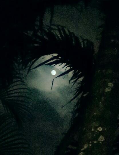 full moon photo 2.jpg
