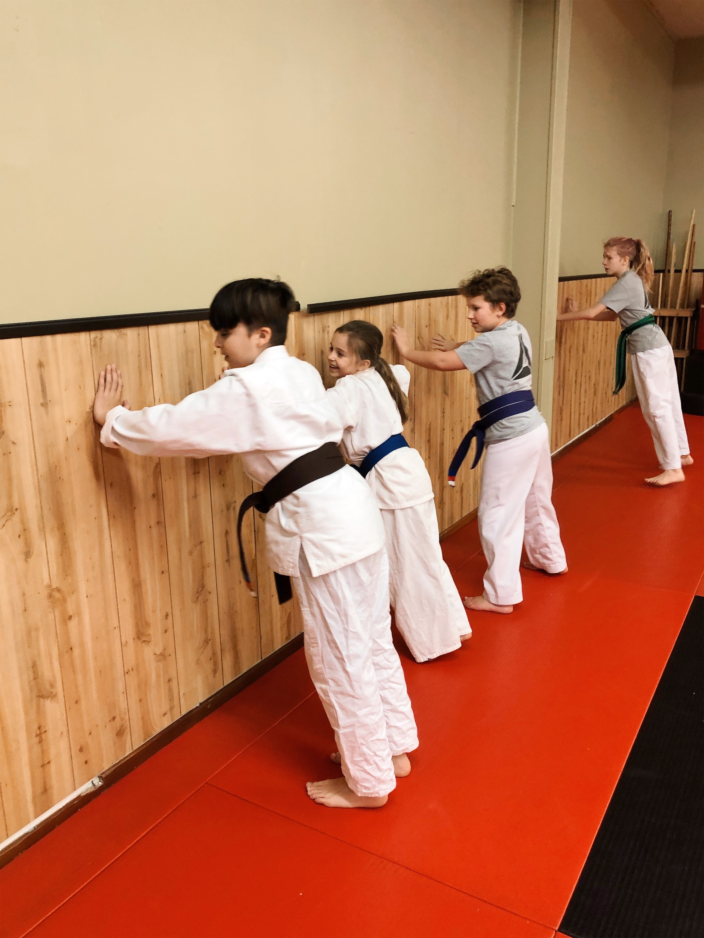 Youth Karate Program