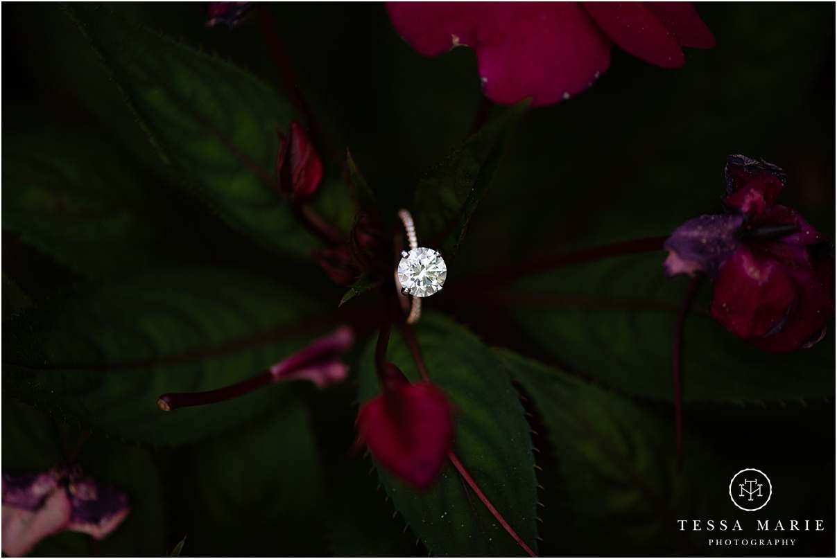 Tessa_marie_photography_wedding_photographer_engagement_pictures_piedmont_park_0021.jpg