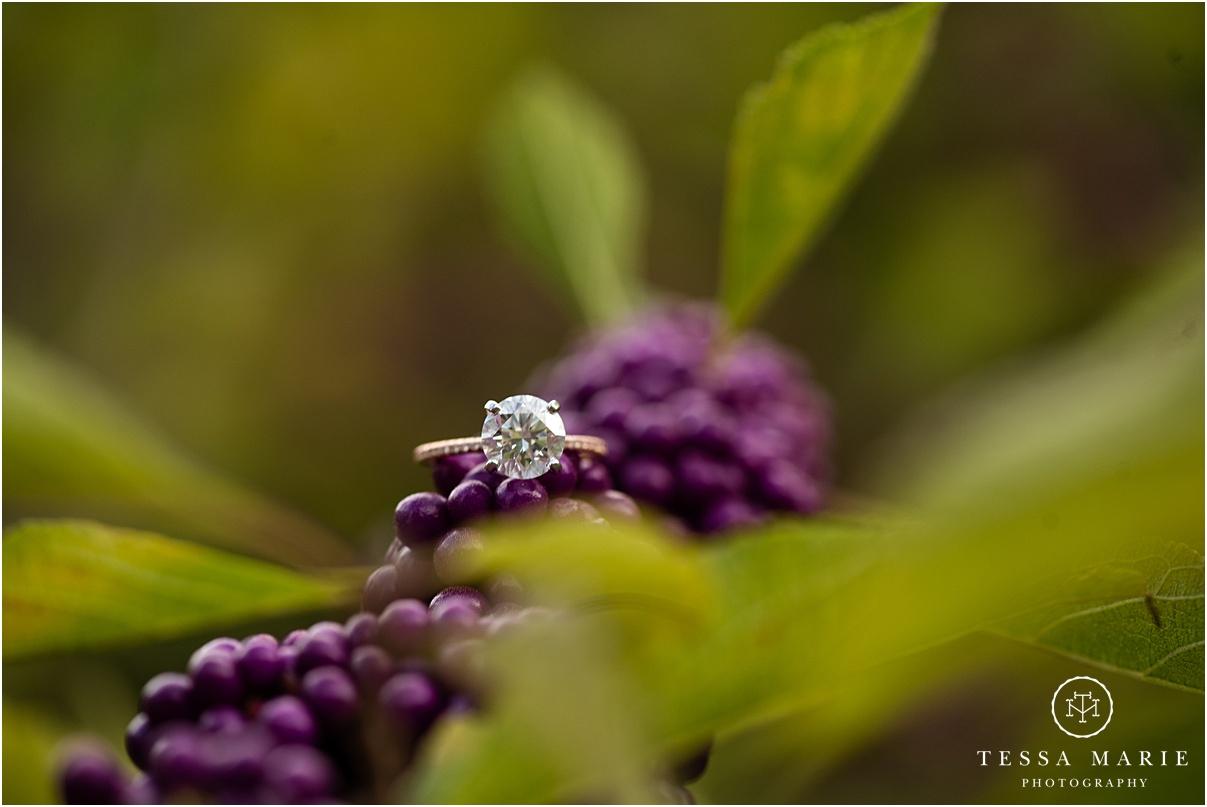 Tessa_marie_photography_wedding_photographer_engagement_pictures_piedmont_park_0062.jpg