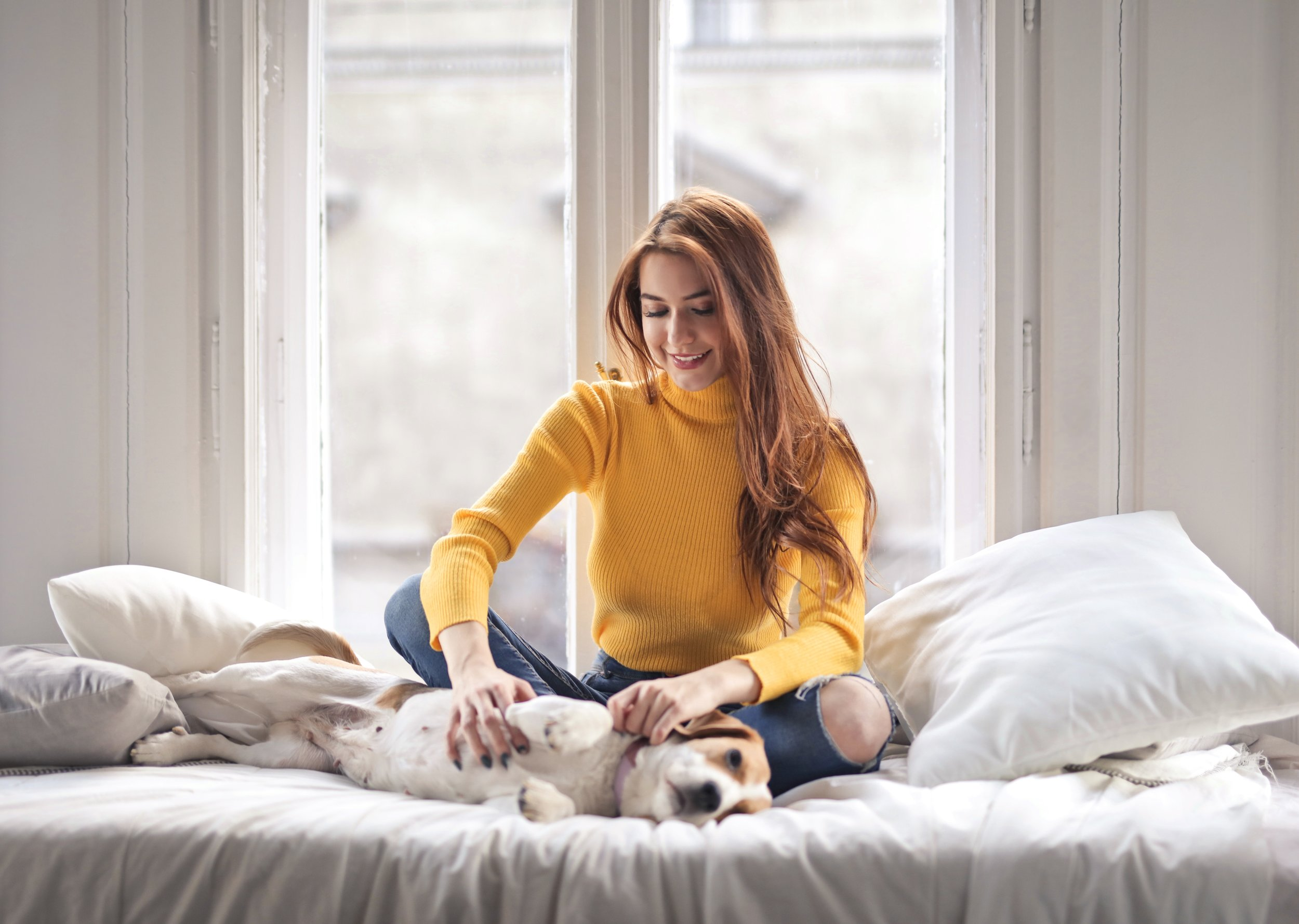 animal-beautiful-woman-bed-2121862.jpg