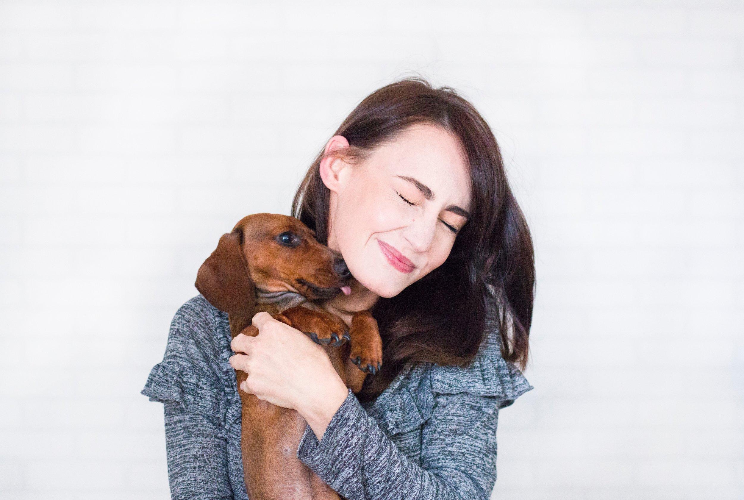 animal-brunette-canine-1139793.jpg