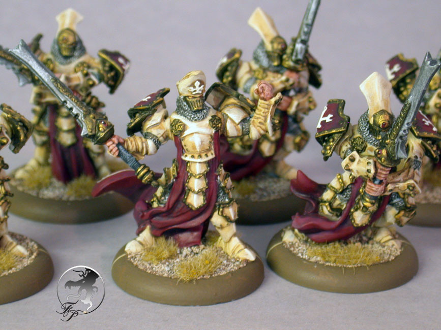 menoth-knights-exemplar.jpg