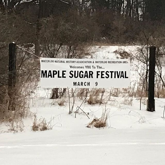 Join us this Saturday at the Gerald E. Eddy Discovery Center for our annual Maple Sugar Festival! 🍁 Featuring interpretive hikes, maple sugaring demonstrations, children's crafts, and of course samples of local maple syrup!  #puremichigan  #maplesyrup #maplesugaring #waterloo