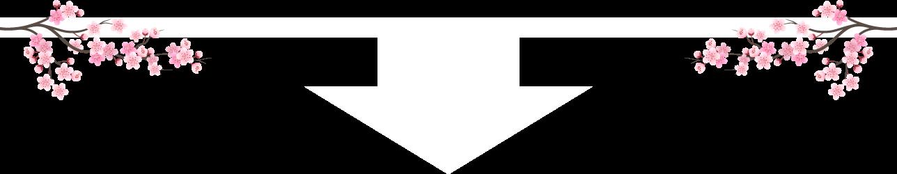 arrow-lp-white-jap.png