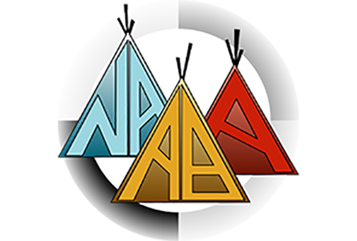 NAABA_FINAL_LOGO-High-Res-PNG-No-Background.png