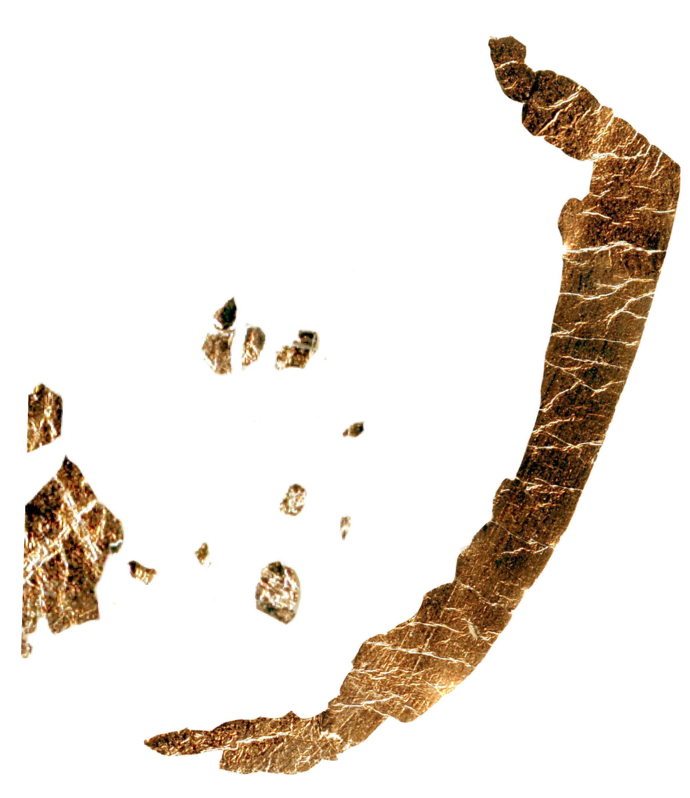GOLDEN-11.jpg