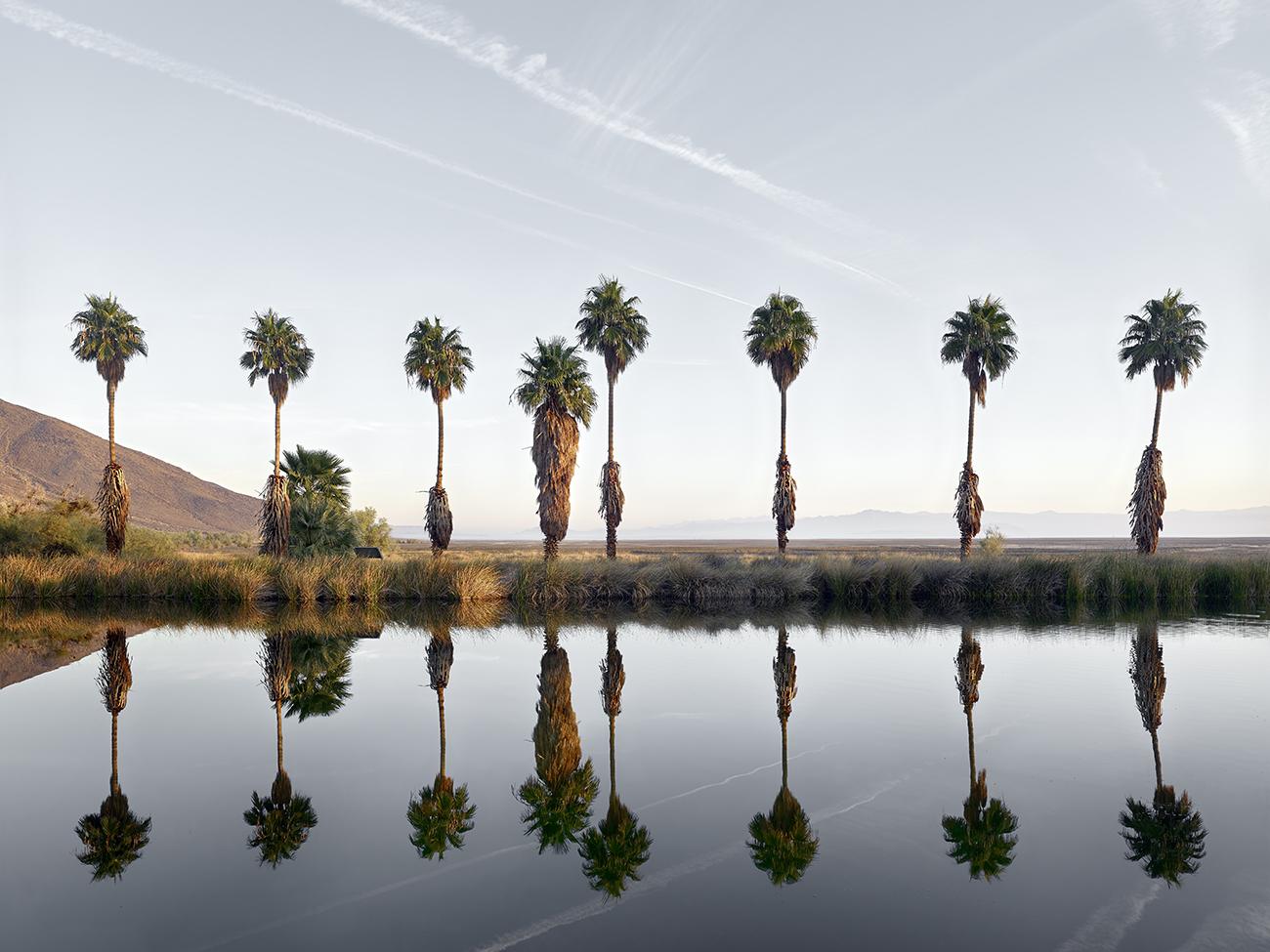 Zzyzx Springs, California.jpg