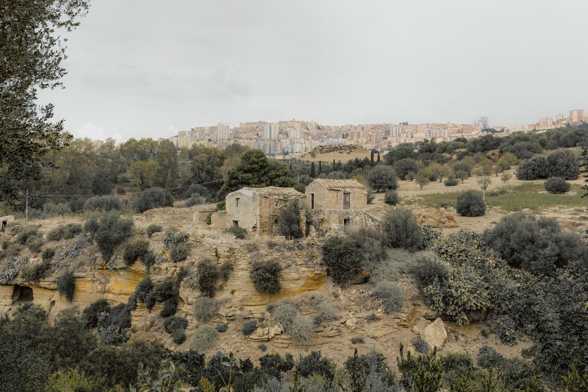 giuliademarchi_mediterranea_6.jpg