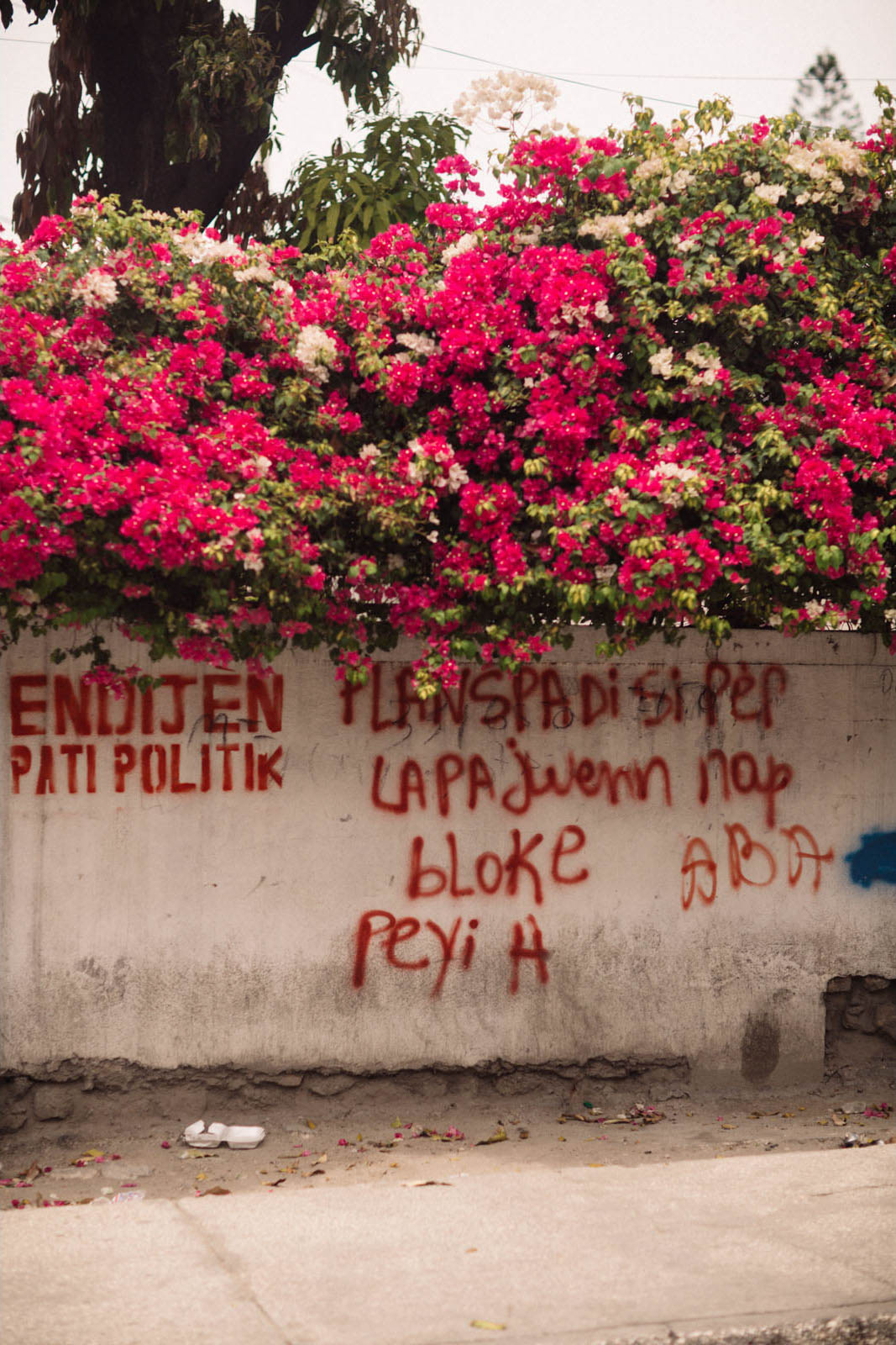 Portraits of Haiti-22.jpg