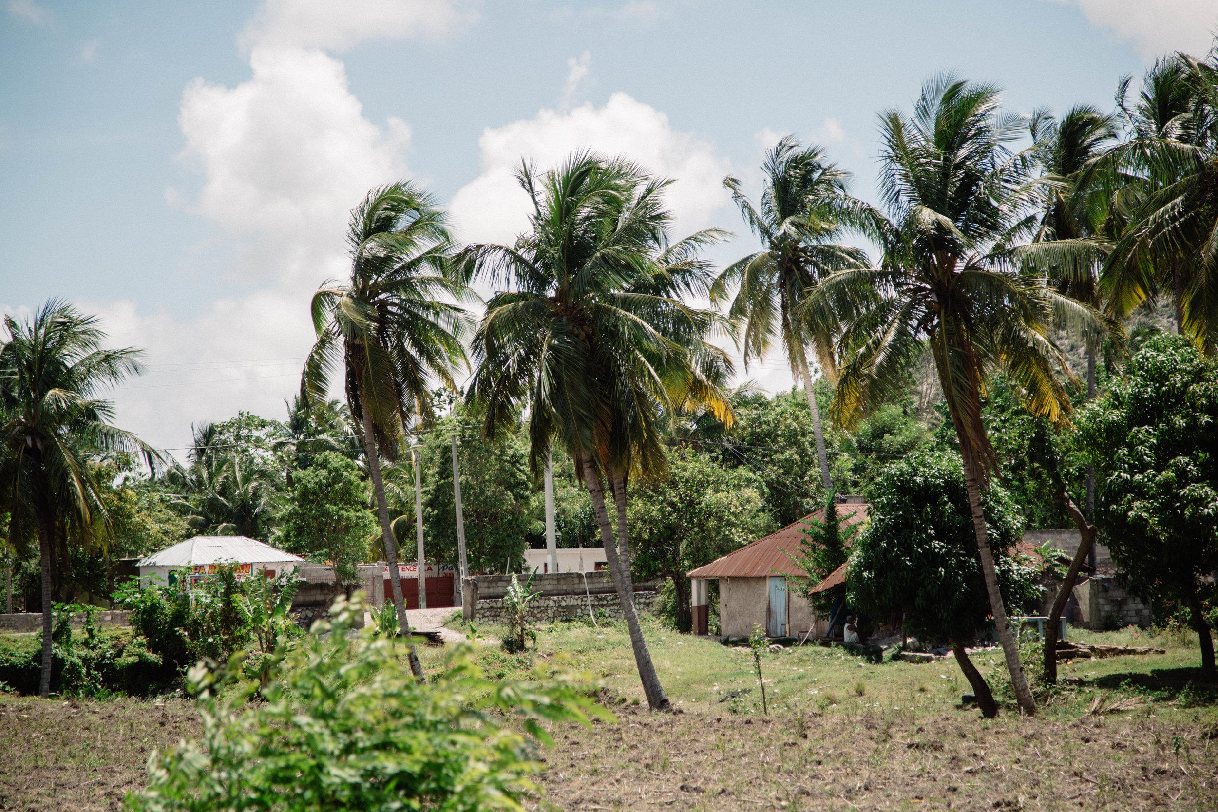 Portraits of Haiti-38.jpg