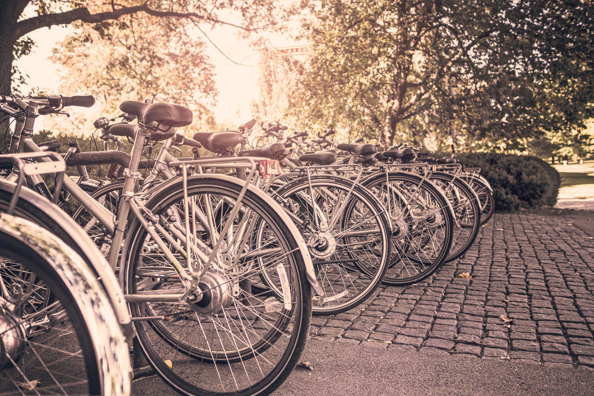 bicycles-bikes-sport-383.jpg
