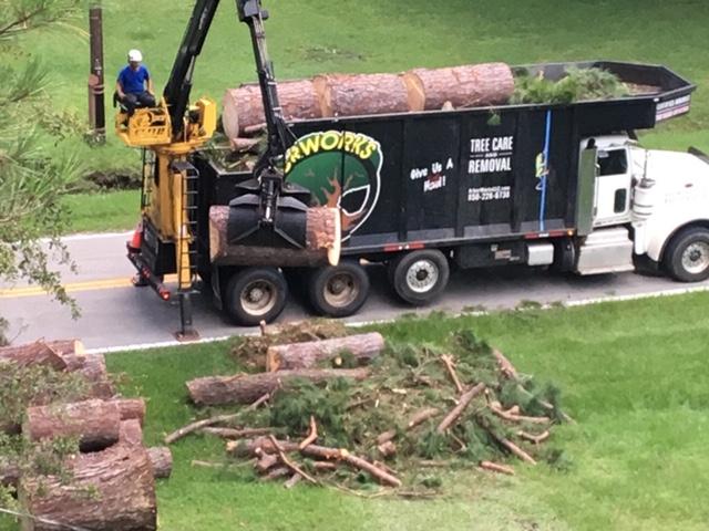 Hauling Service Hauling Tree Debris Away