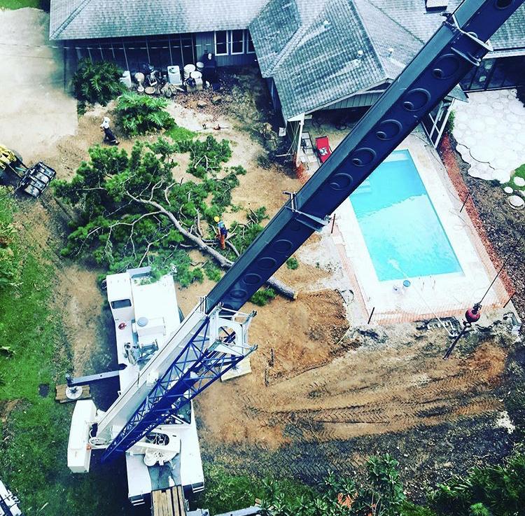 70 ton link belt crane tree removal