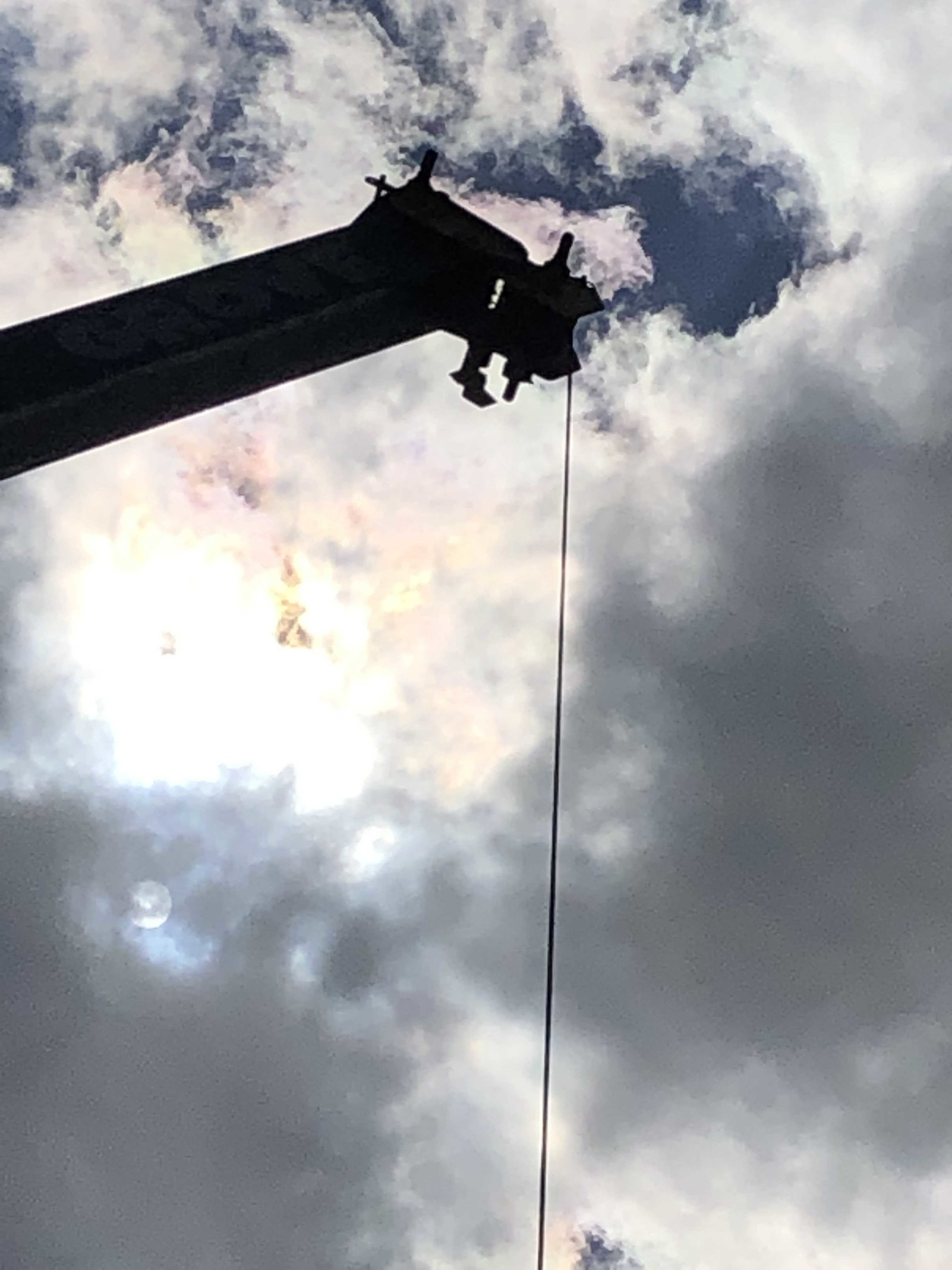 Crane service for tree removal