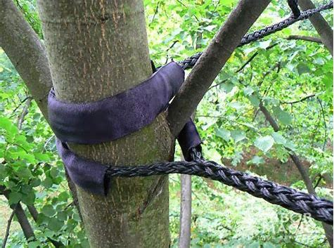 tree cabling 3.jpg
