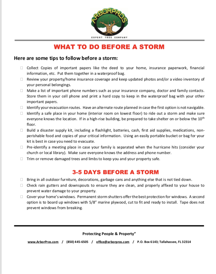 What to do Before a Storm image.jpg