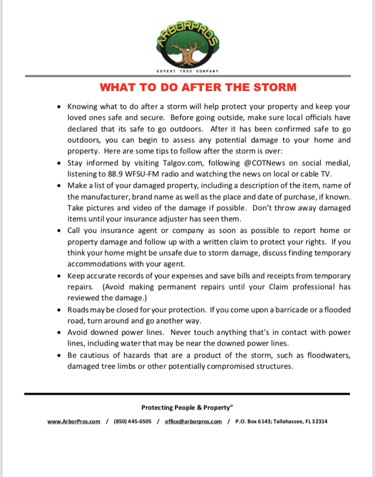 What to do After a Storm image.jpg