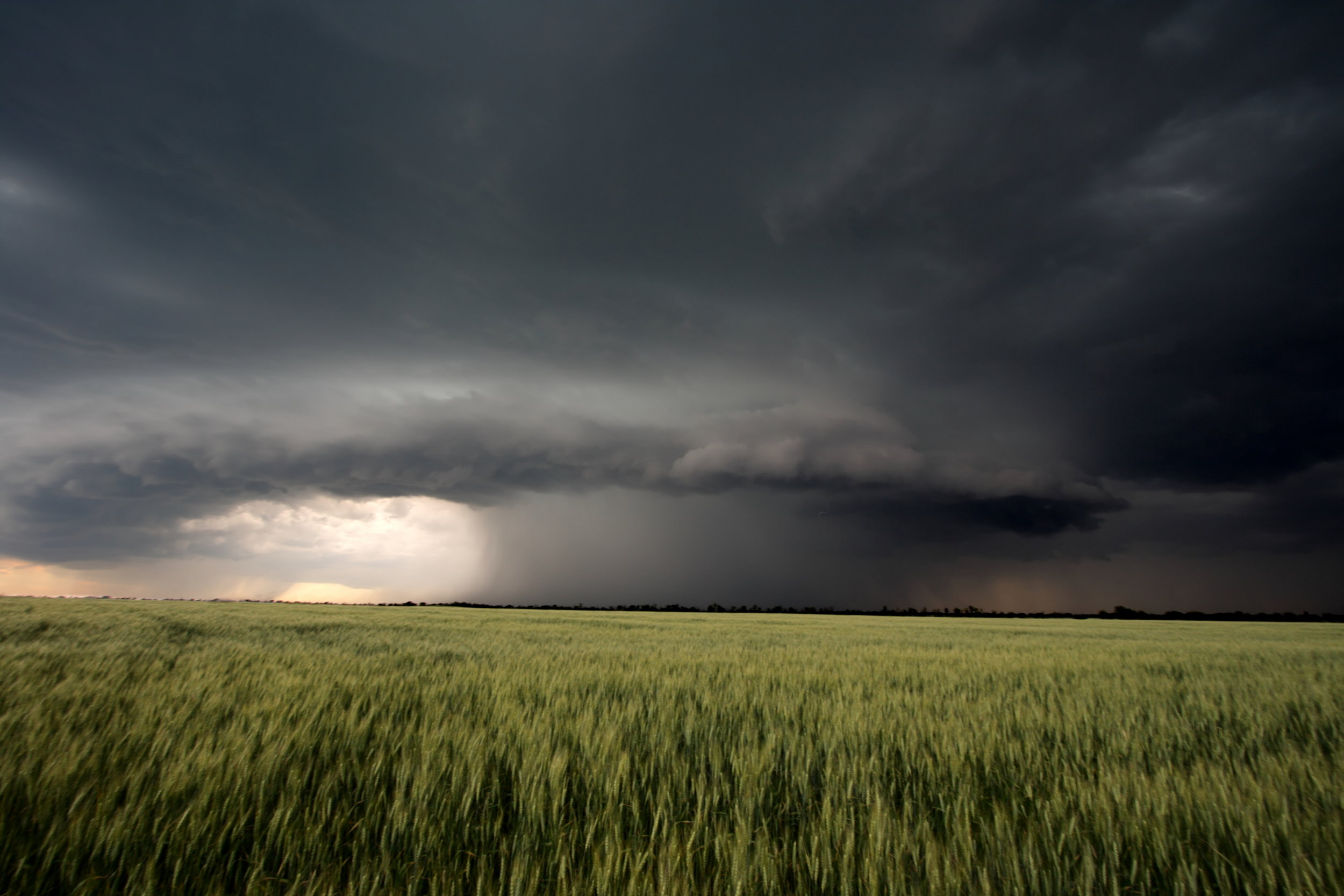 storm is coming.jpg