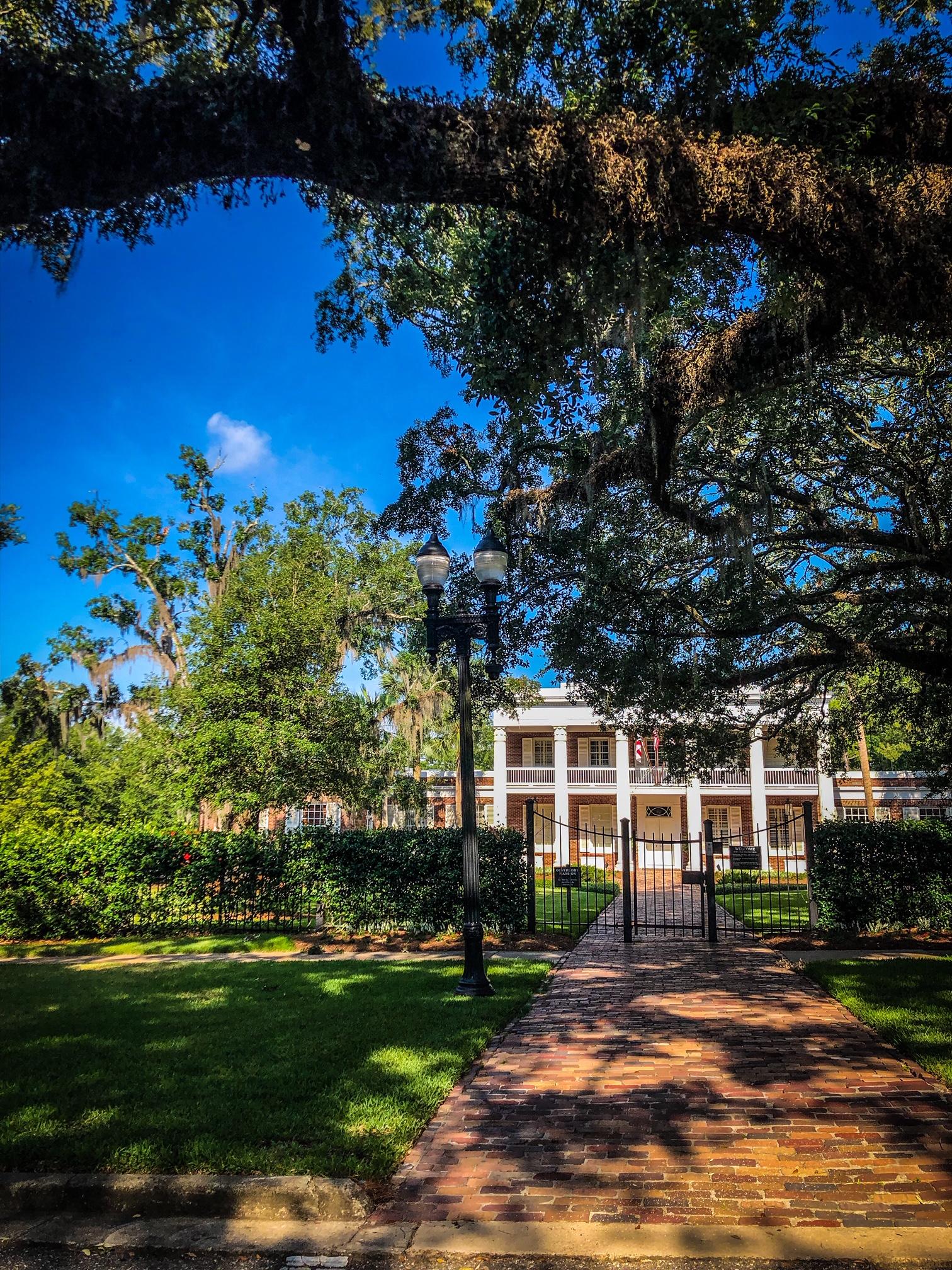 Governor's Mansion Tree Work