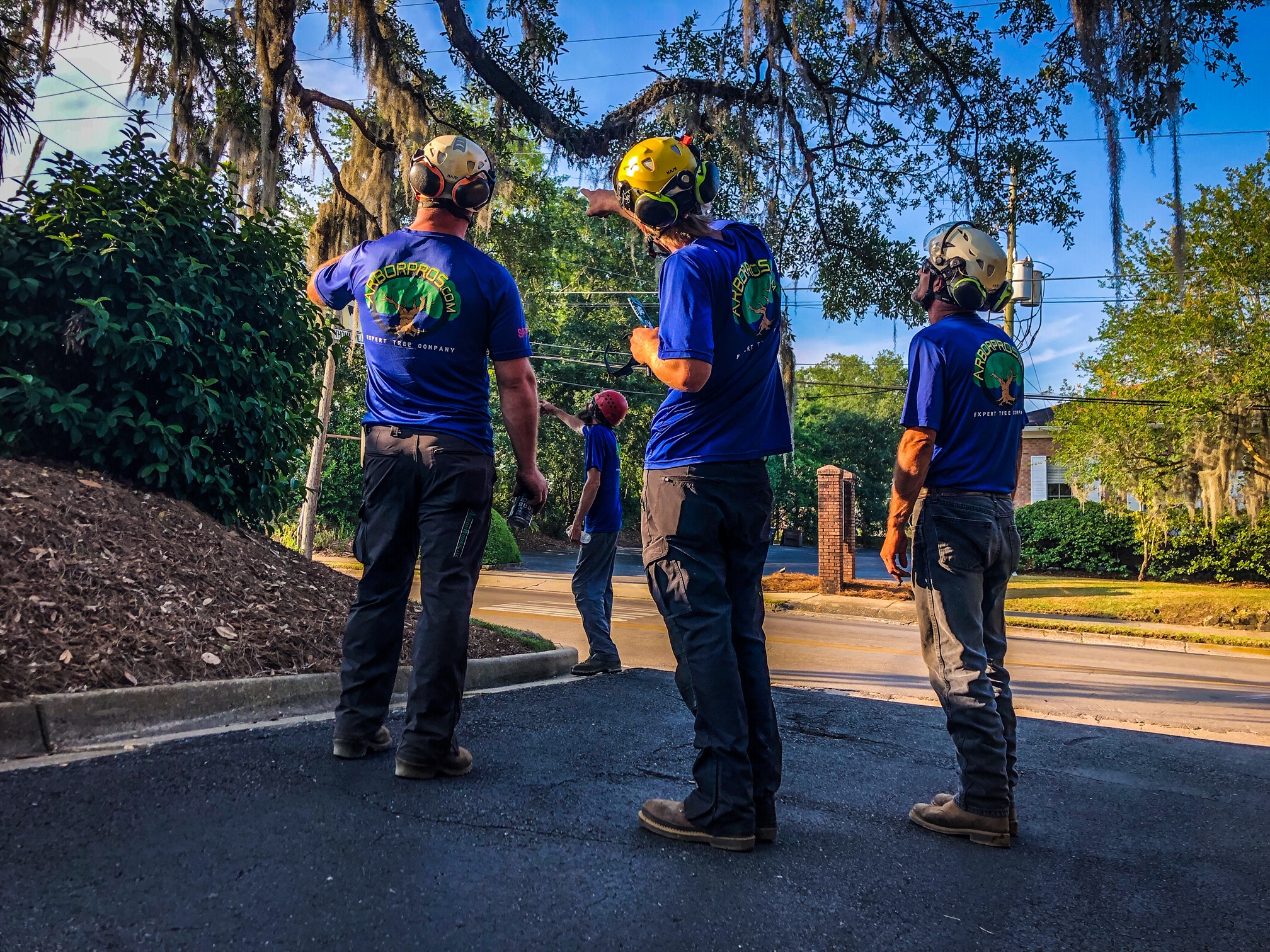 Tree Team Pre-Job Walk Through