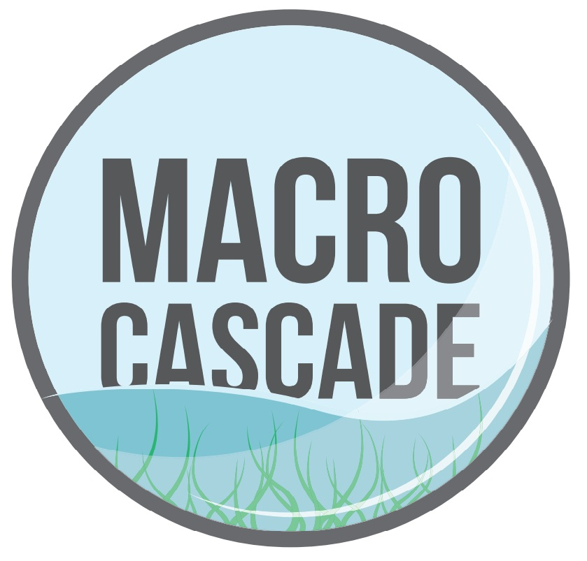 MACRO+CASCADE+logo.jpg
