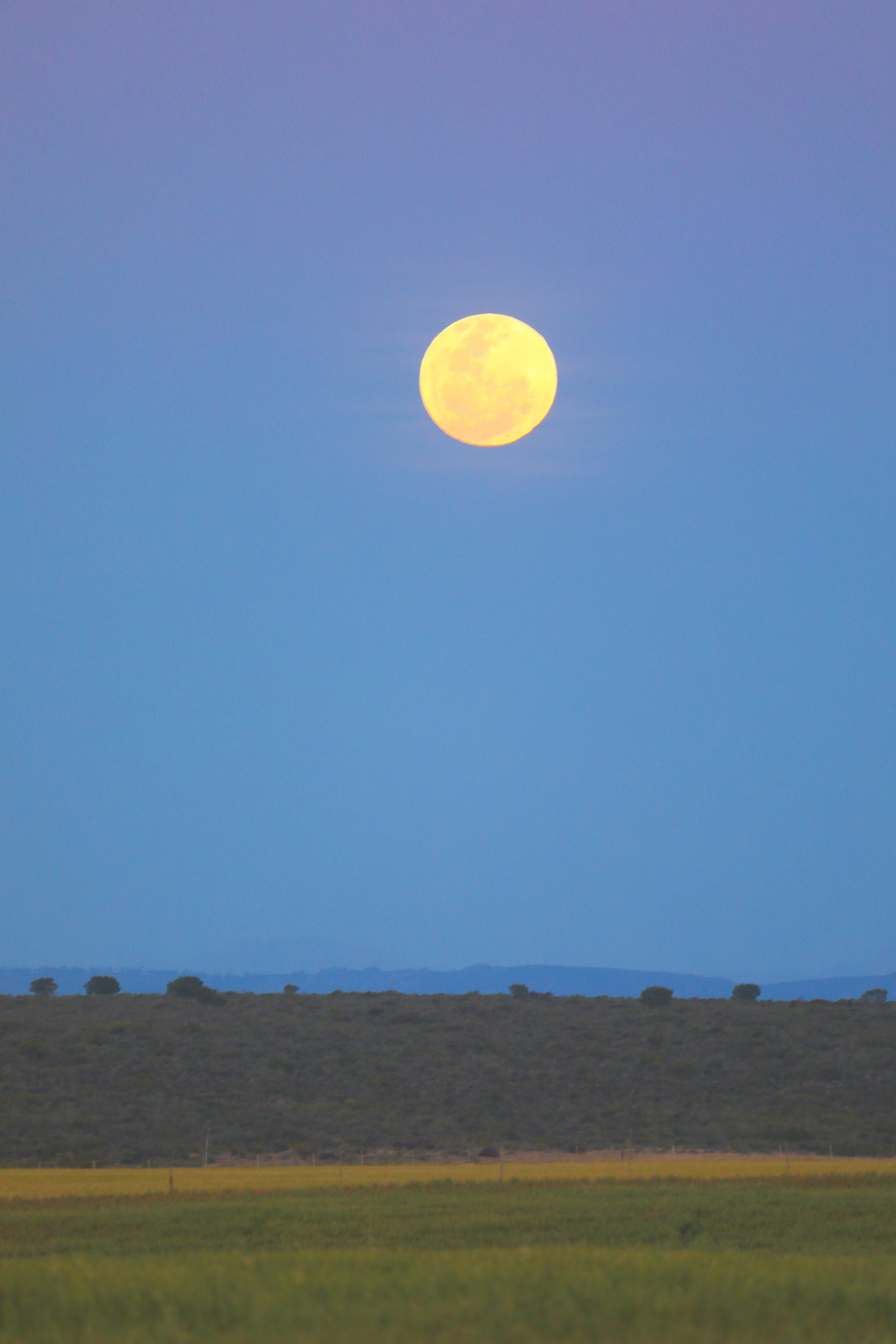 Moon rising over the veld