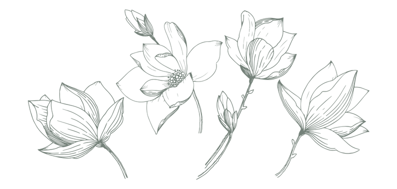 WILD FLOWER SAFARI - logo flowers.png