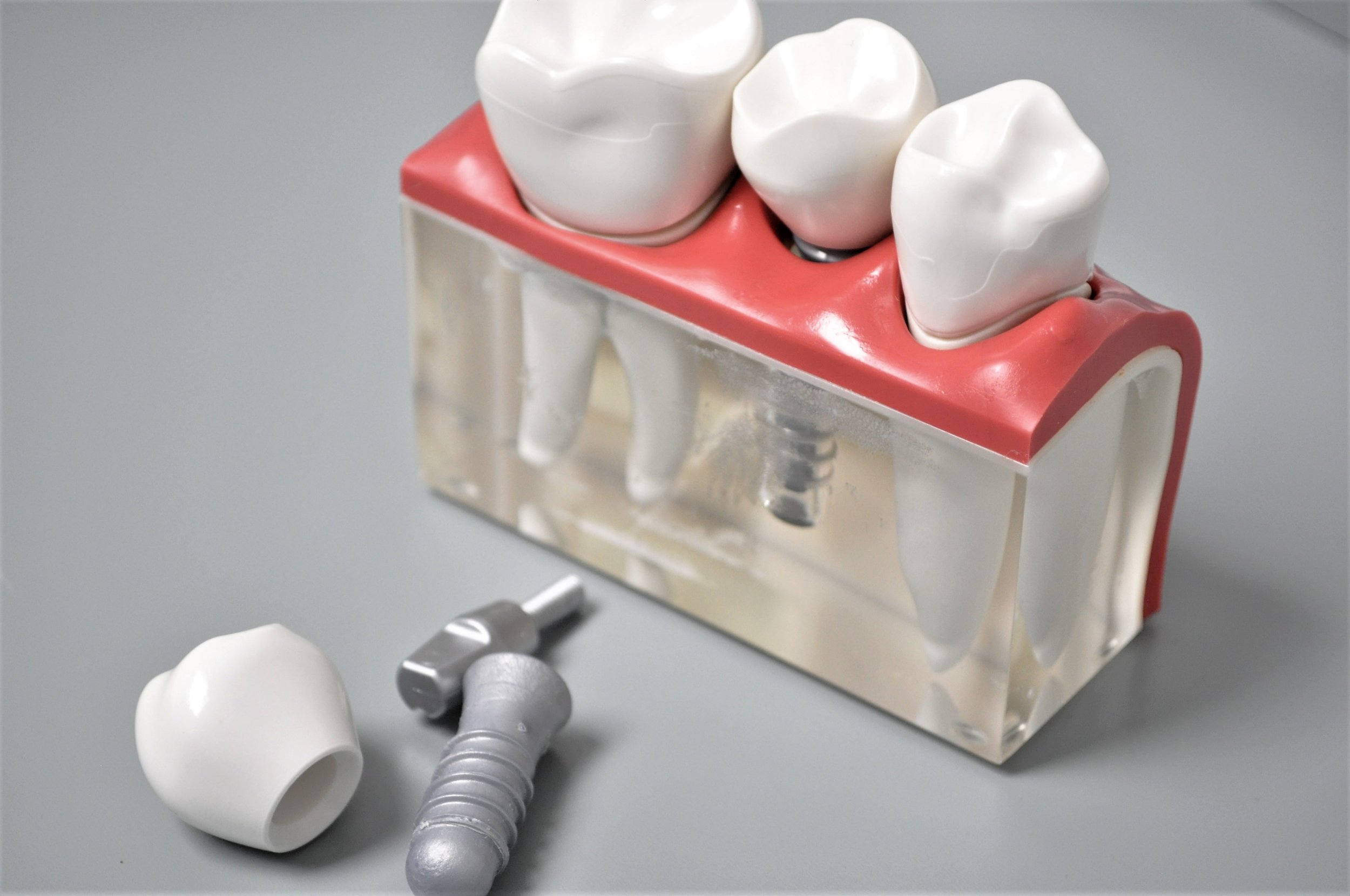 Most of us take teeth for granted, but they are so much more than just tools for eating. -