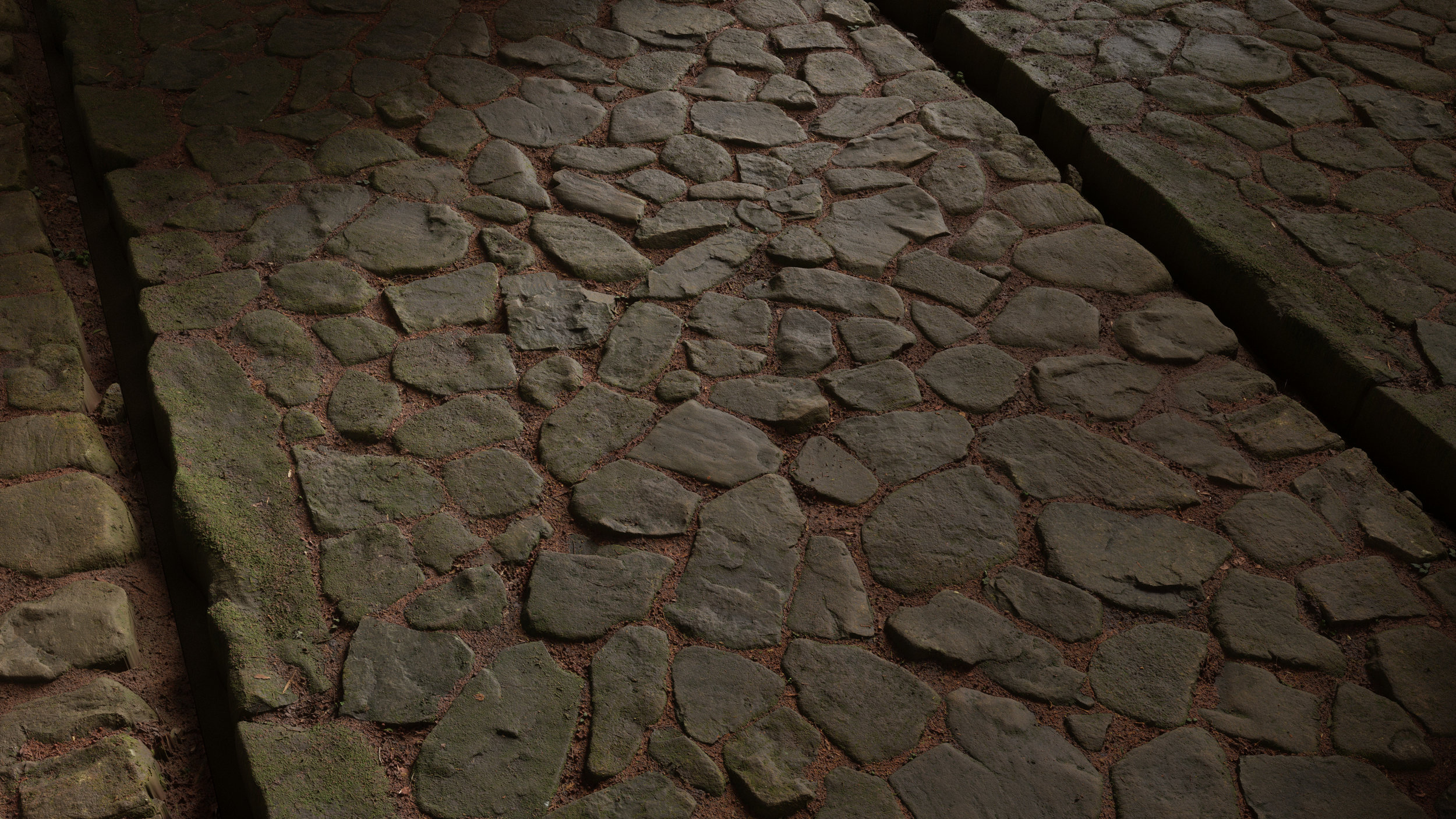 TexturesCom_Forest_Cobblestone_04_Path_header.jpg