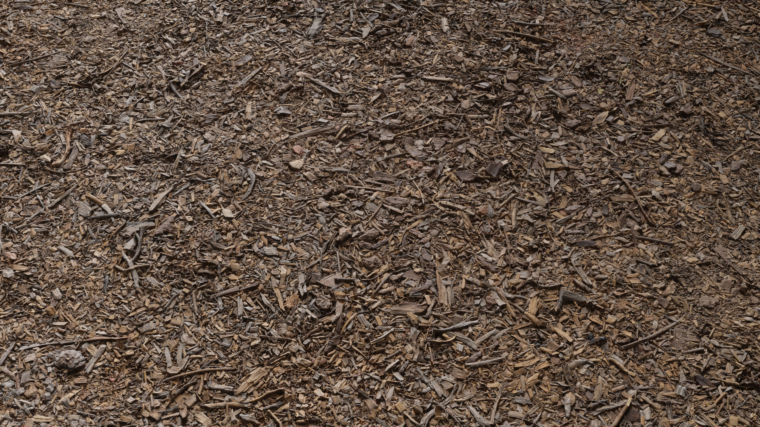 TexturesCom_Bark_Debris_Ground_header.jpg