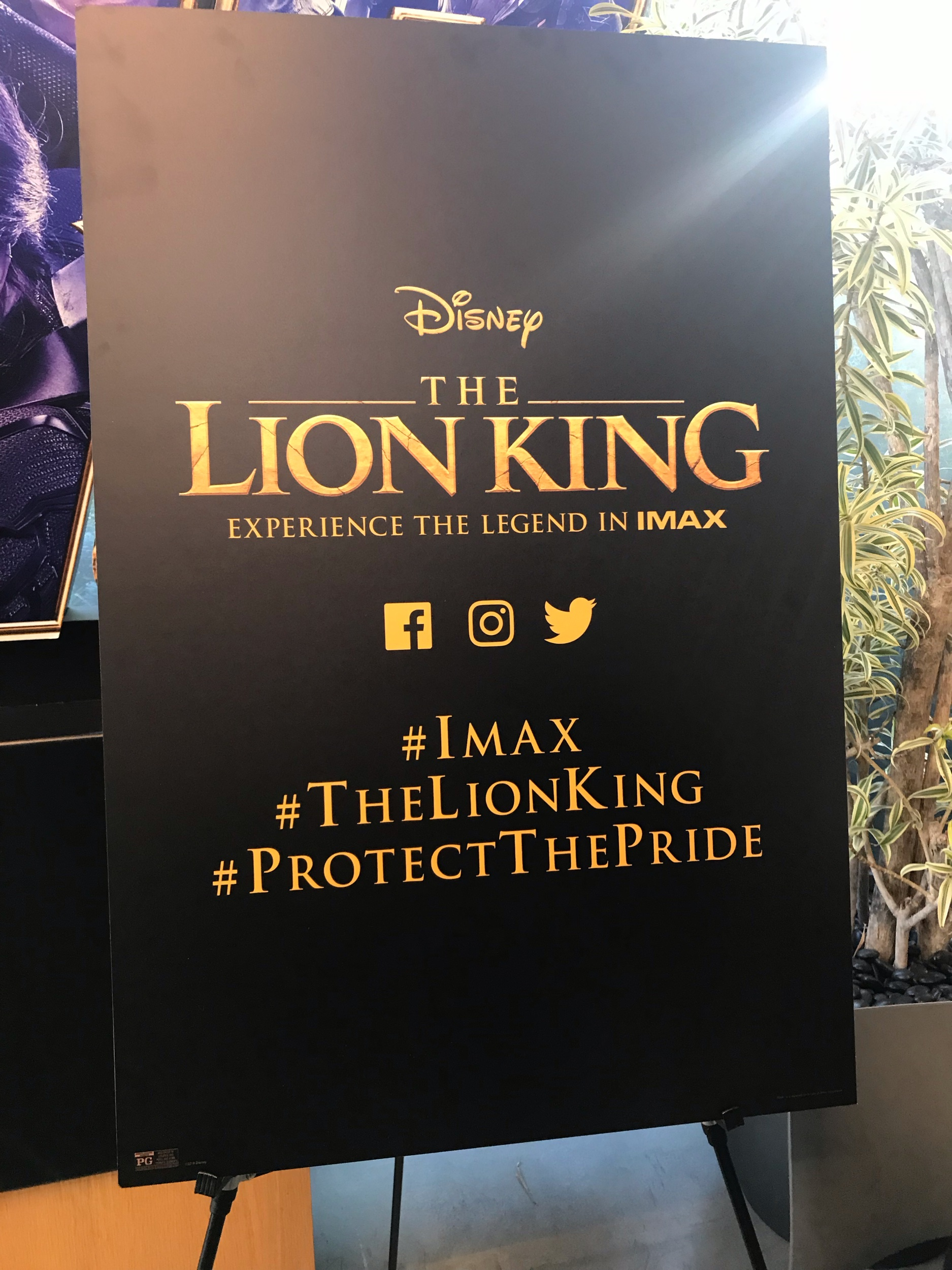 "TV Host and Actress Vivian Nweze at ""The Lion King"" Advanced Screening at IMAX Headquarters"