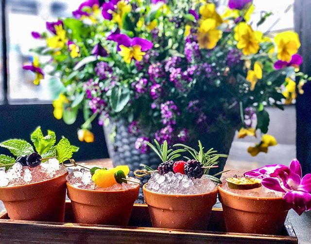 This is the LAST WEEK to try our Spring cocktails and flower box flights 💐 before they go on vacation for the Summer! 🍹  #keepbuggeringon #thewinston #hoboken #cocktailbar #speakeasy #cocktails #cocktail #springcocktails #springmenu #newmenu