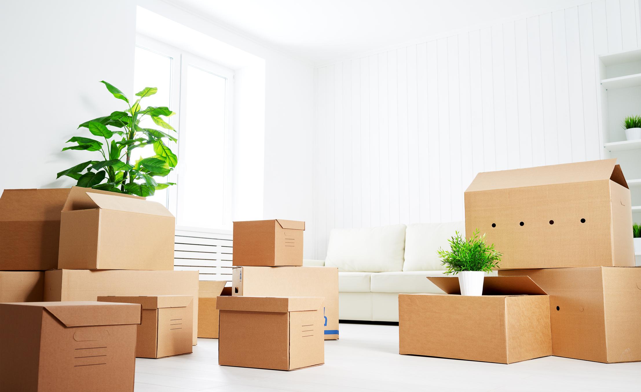 Moving / Renovating -