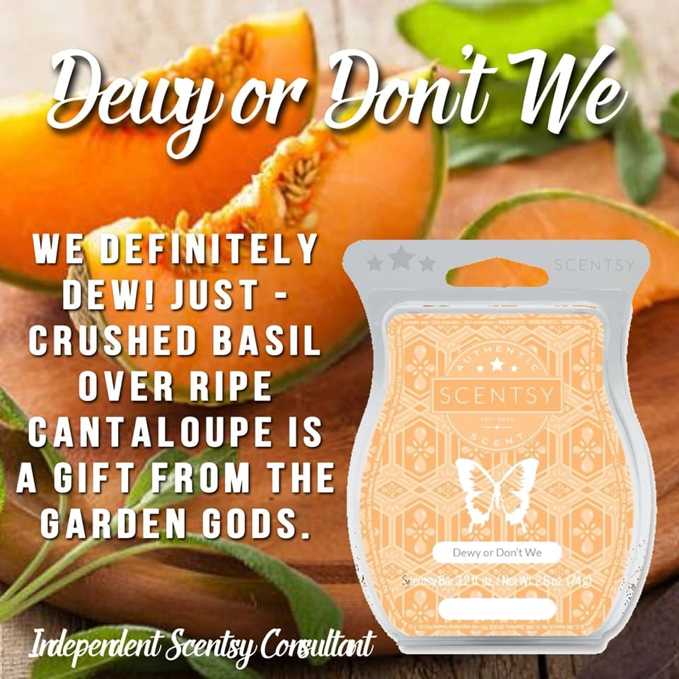 dewy or dont we scentsy bar.JPG