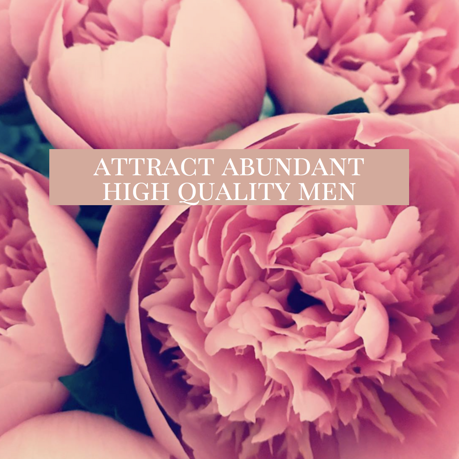 Attract Abundance.png