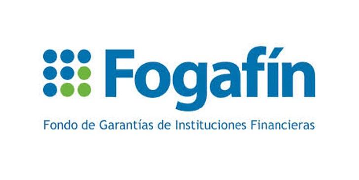 fogafin logo.jpg