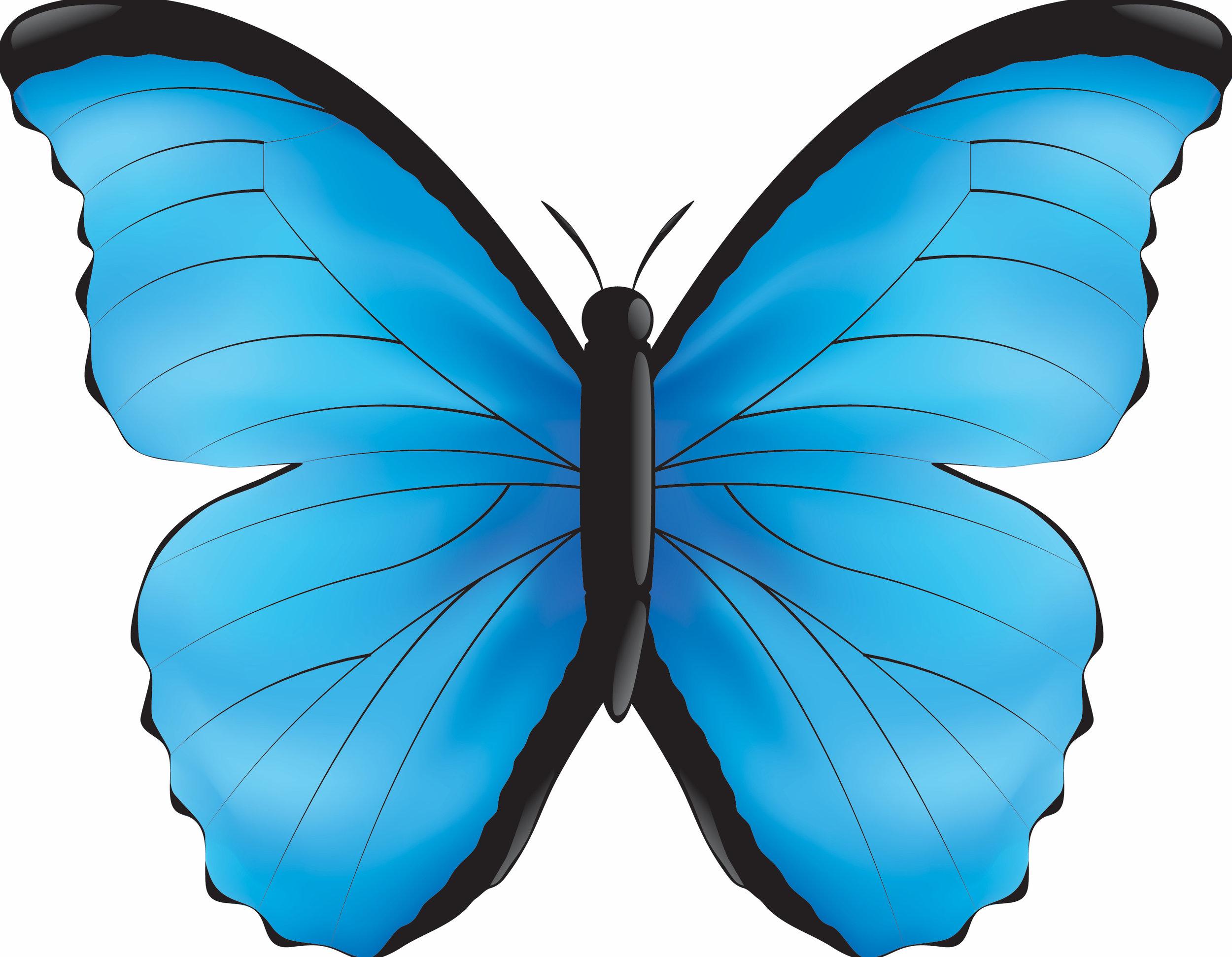 Blue Morpho Yoga Logo.jpg