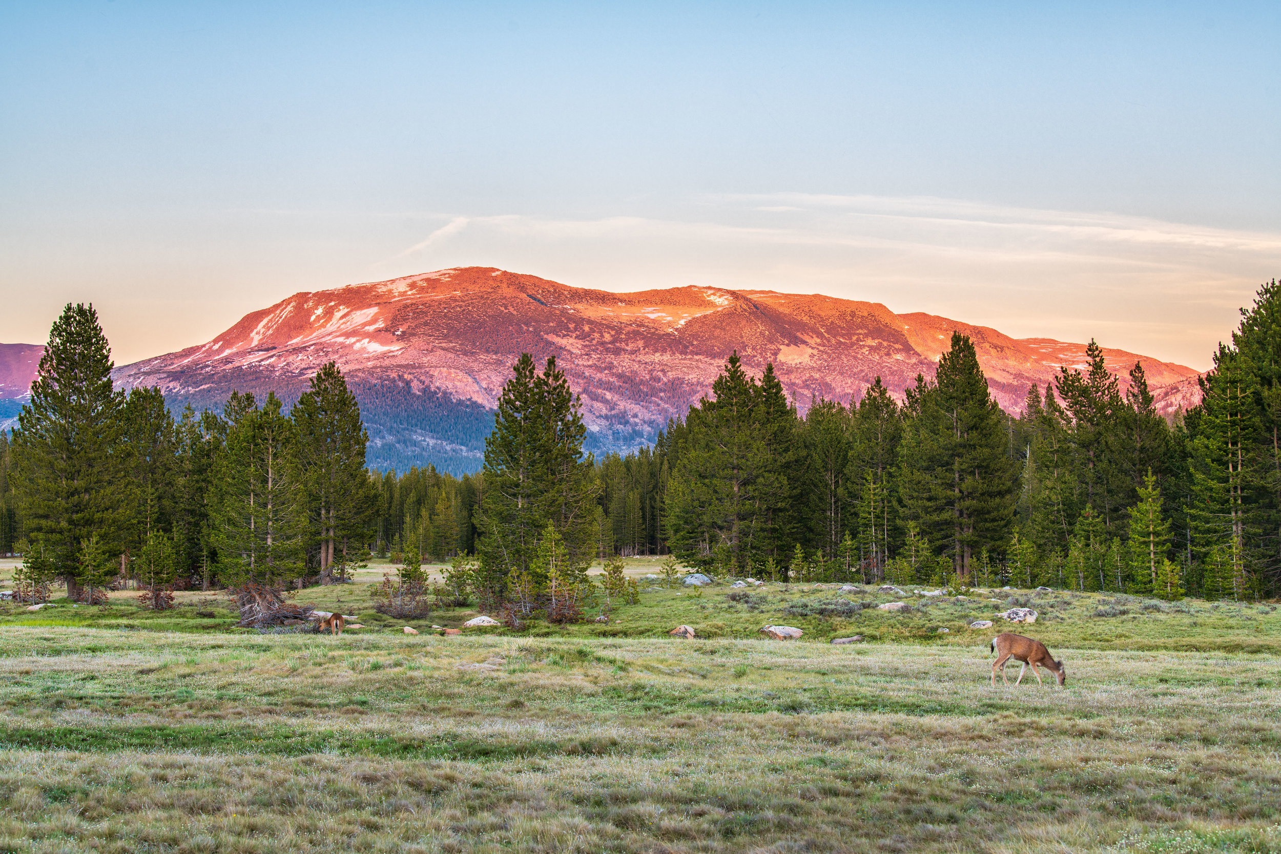 """Sunset at Tuolumne Meadow. (1/6 sec at f/8.0, iso64, 70-200mm len @70mm) GPS coordinate: 37°52'30.1""""N 119°21'60.0""""W"""