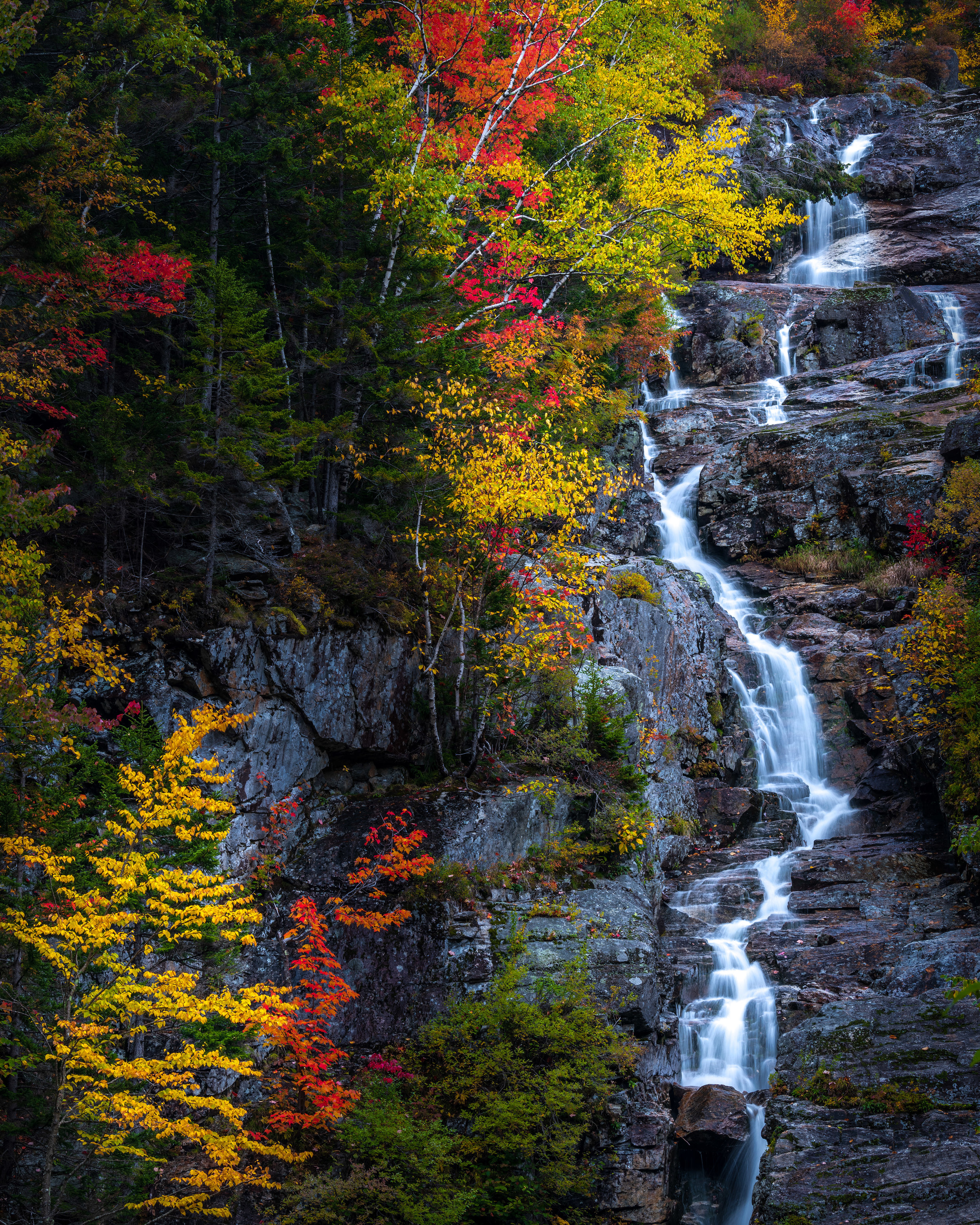 Fall foliage at Silver Cascade