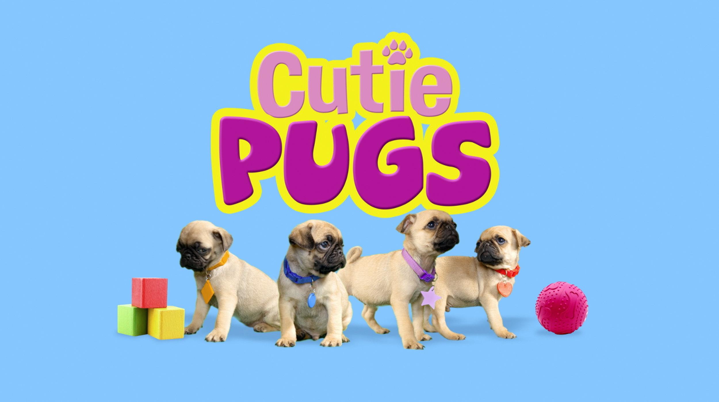 1_Cutie Pugs_Splash Page (1).jpg
