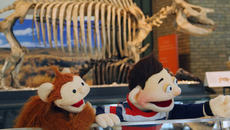 Howie Baboo Dinosaur Exhibit.jpg