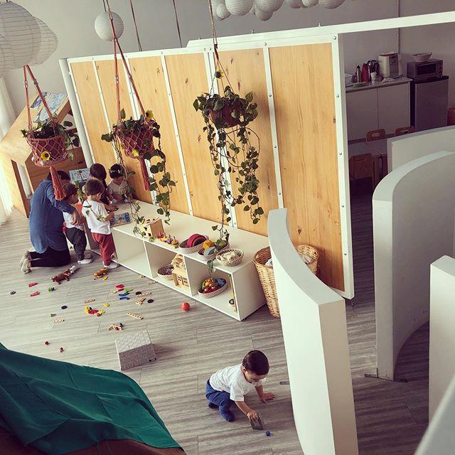A la naranja... Se transforma: Educación para el Siglo XXI... Pronto tres sedes!!!!! Crecemos con los niños