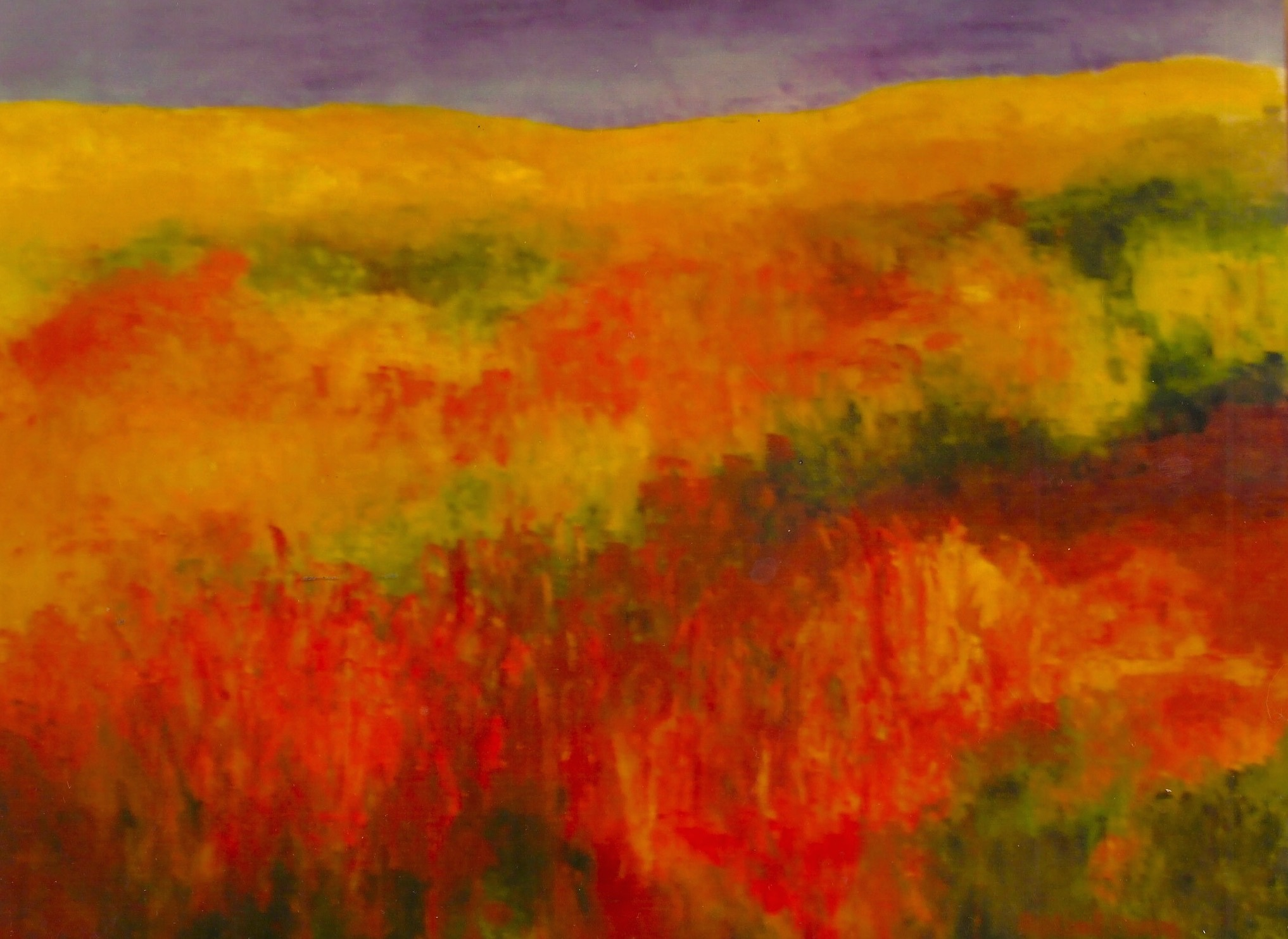 Midwest Prairie  48x60  Oil on Canvas (sold)