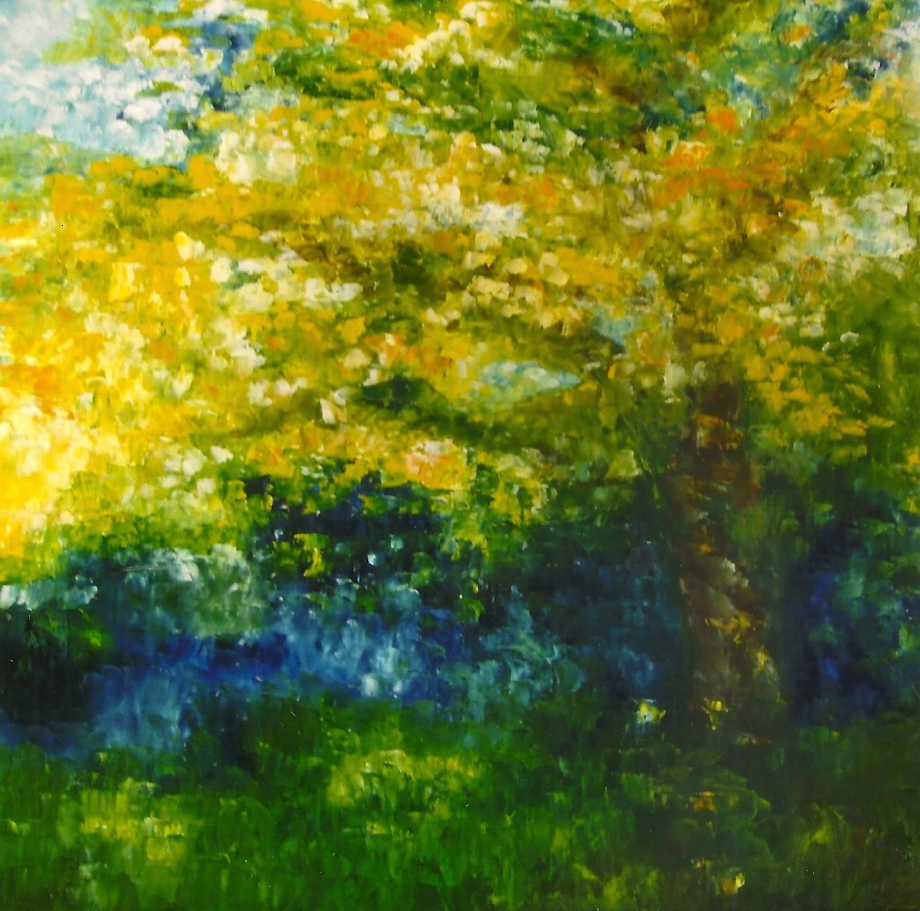 Oak Tree by The River  36x36 Oil on Canvas(sold)