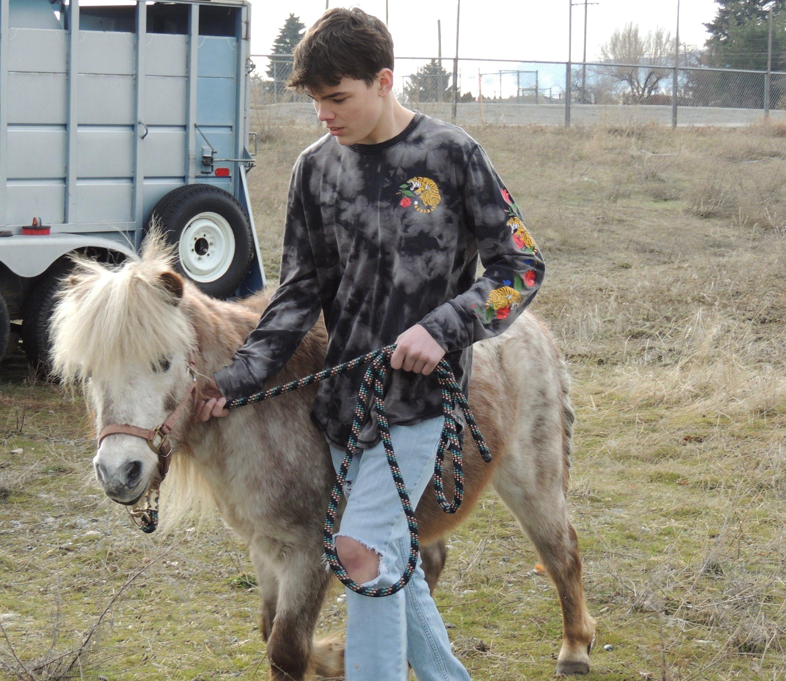 Horse Lab EVHS 6.jpeg