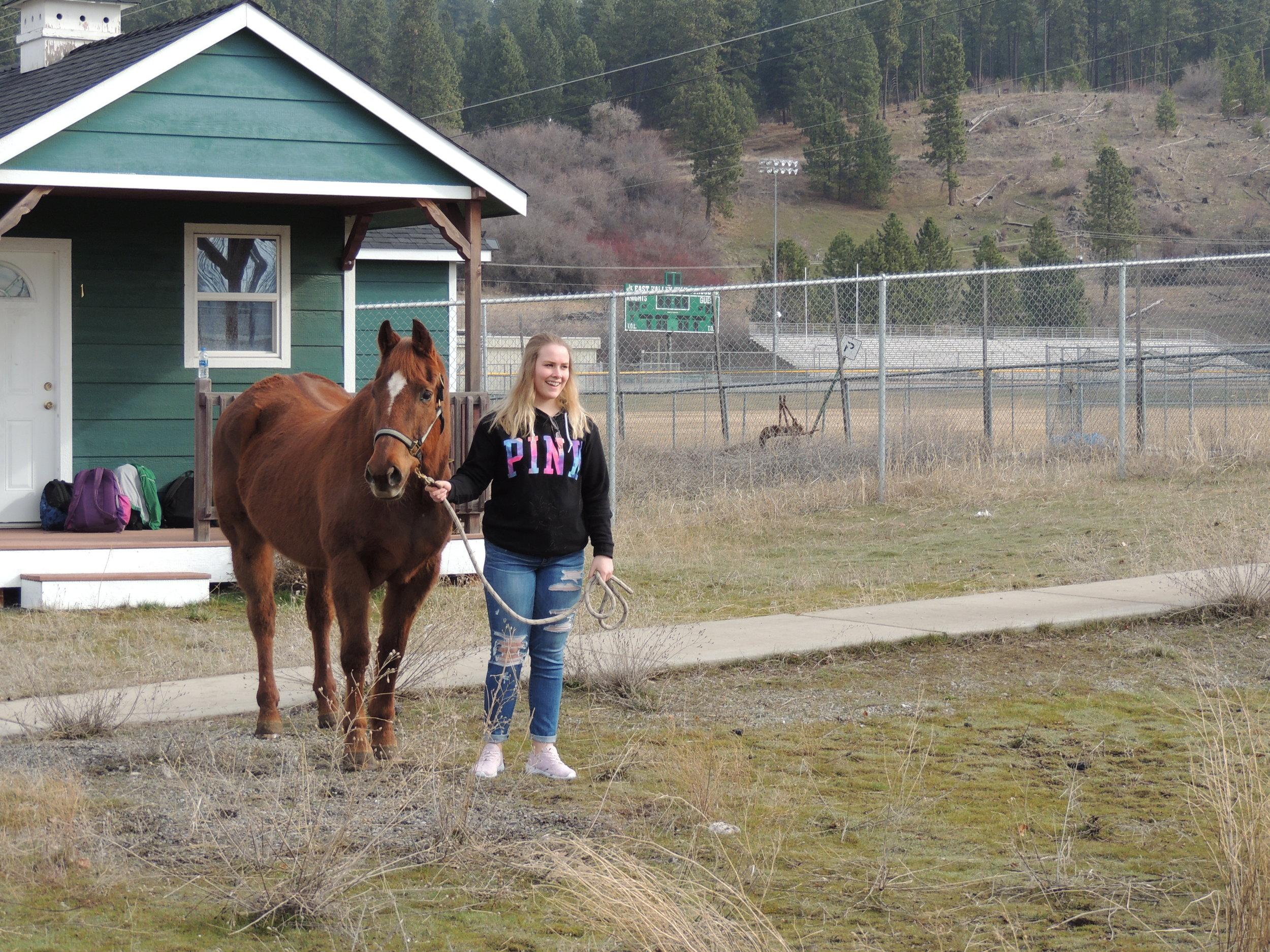 Horse Lab EVHS 5.jpg