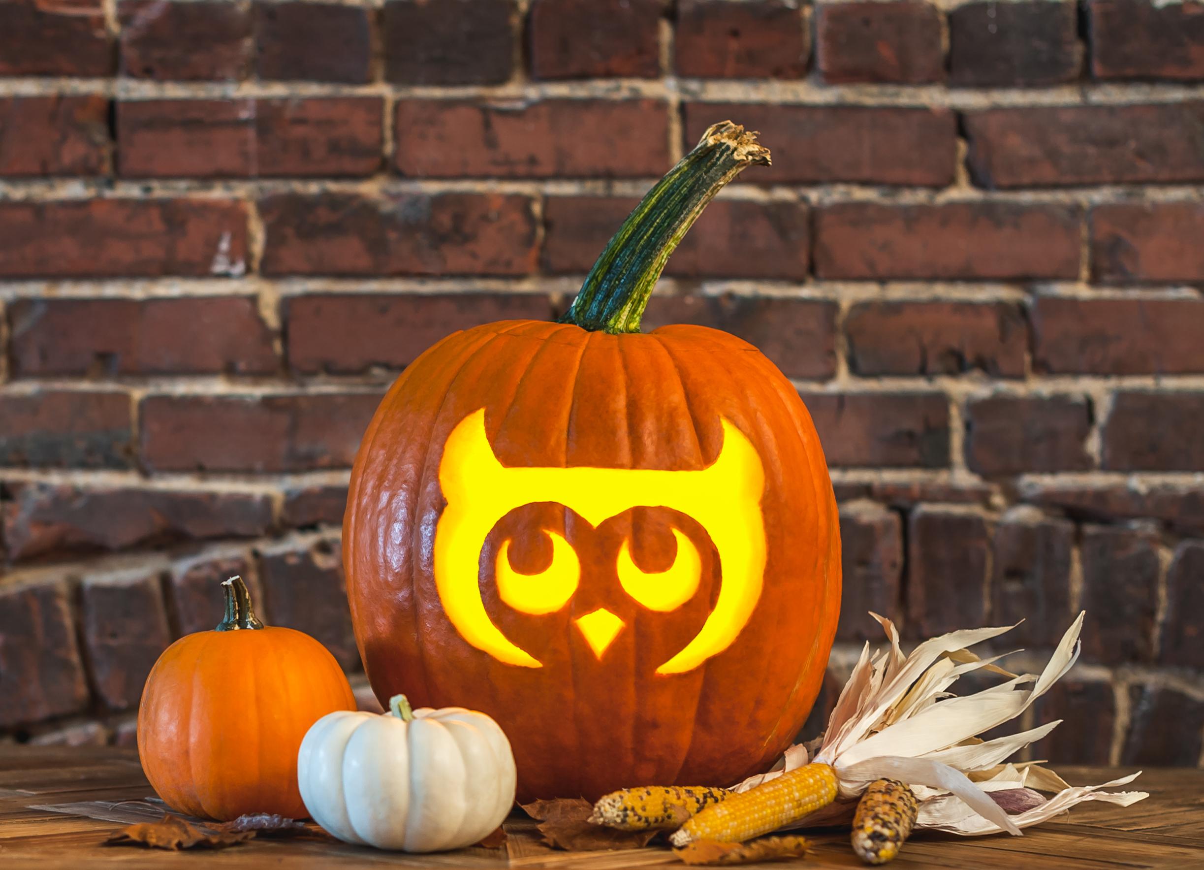 Owl_Pumpkin.jpg