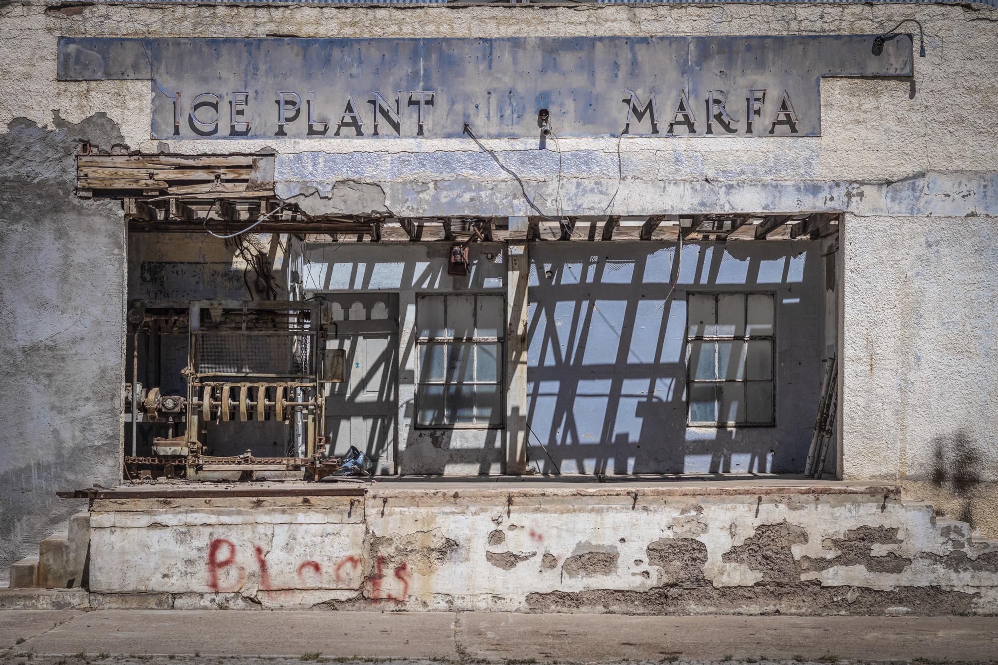 ice_plant_marfa.JPG