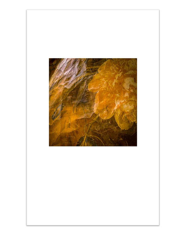 Fibonacci_Edit_3.jpg